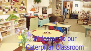 Aa_Caterpillar_Class